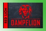 Dampflion Red Aroma 20ml